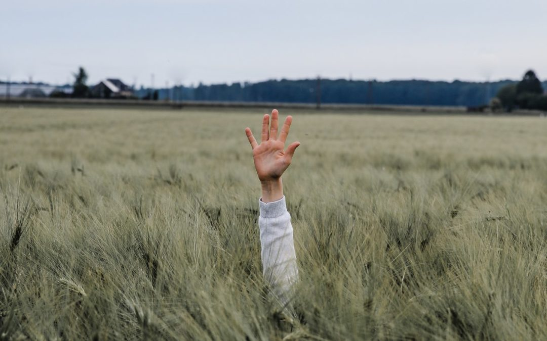 Pięć zasad bycia szczęśliwym